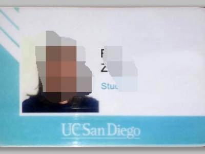 美国加州大学圣地亚哥分校